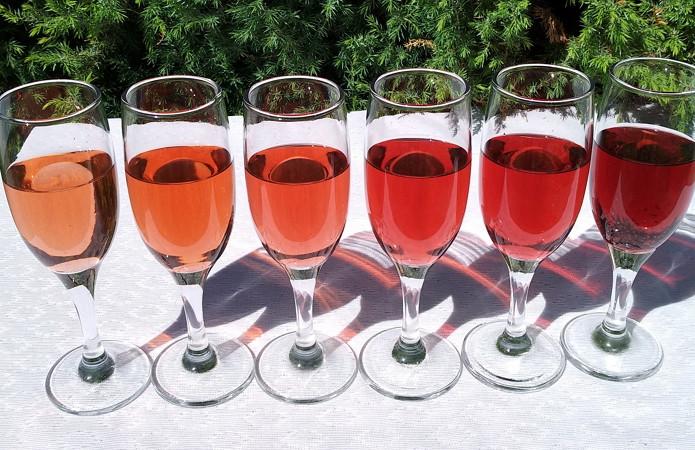 Червоні види вин